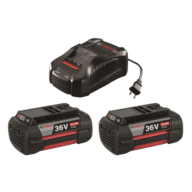 SKC36-01 36 V Lithium-Ion Battery and Charger Star